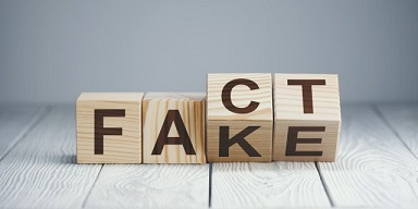 Fake or fact letter blocks