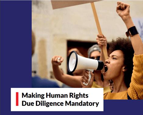 Making Human Rights Due Diligence Mandatory